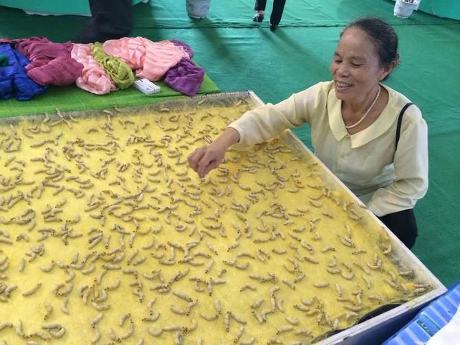 chăn bông, chăn bông tơ tằm, tằm tự dệt, Việt Nam, tơ tằm, tằm, chăn-bông, chăn-bông-tơ-tằm, tằm-tự-dệt, độc-nhất-Việt-Nam, tơ-tằm, xuất-khẩu, trồng-dâu-nuôi-tằm