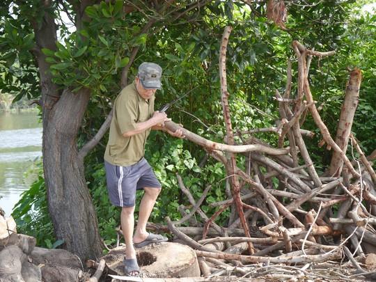 Ông Hòa, một người dân sinh sống trên đường Nguyễn Văn Lượng thường hay thu gom củi khô trong công viên để mang về sử dụng.