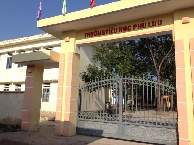 """Trường Tiểu học Phù Lưu (xã Phù Lưu) – điểm """"đổ bộ"""" của """"hồng sâm ngàn năm Hàn Quốc"""" vào đầu tháng 12 vừa qua."""