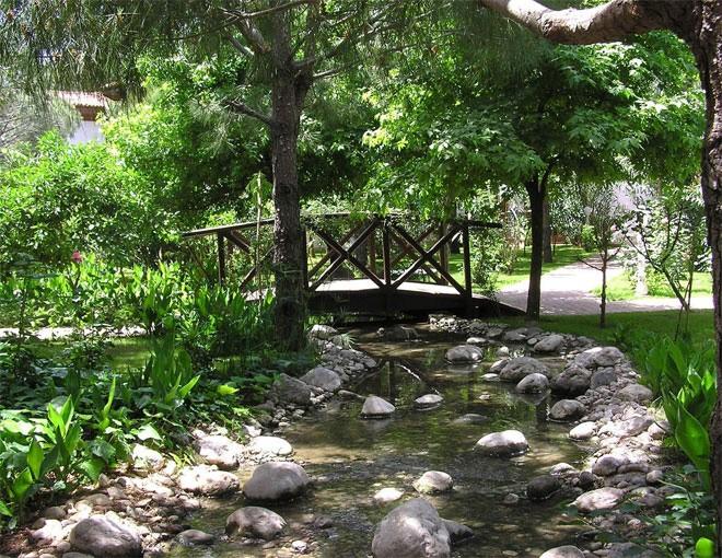 Trong khuôn viên của dinh thự có một dòng suối nhân tạo với nhiều cá (ảnh minh họa).</div><div>