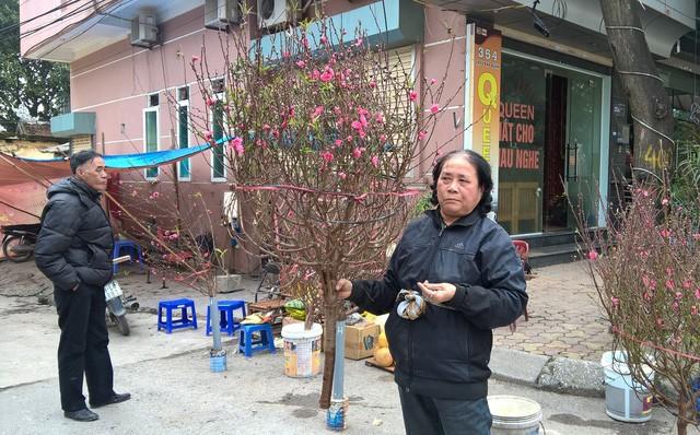 Những người bán đào dạo trên phố Lạc Long Quân (HN) - Ảnh: K.L