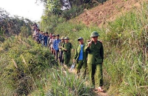 Nghệ An Cháy rừng ở Kỳ Sơn 104ha cây cối bị thiêu