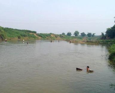 Hàng ngàn hộ dân có nguy cơ thiếu nước sạch vì cá chết trên sông Bưởi