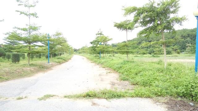 Một con đường trong dự án Đảo Hoa Phượng
