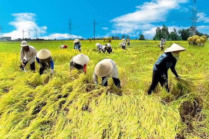 nông nghiệp việt nam, nông nghiệp tăng trưởng âm, hạn mặn, tài nguyên cạn kiệt, hội nhập