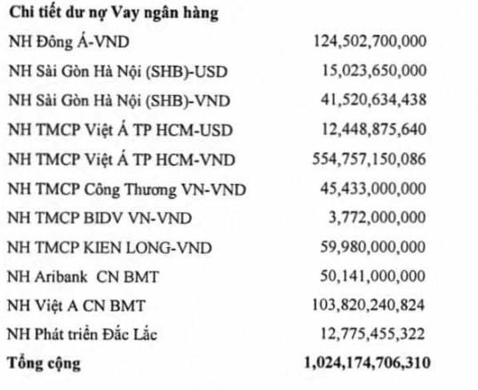 Dư nợ vay tại 30/6/2016