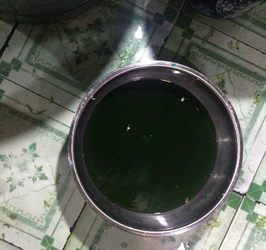 Hóa chất màu xanh được ngâm vào chậu nước