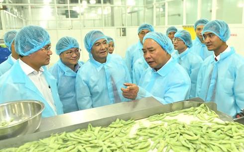 Thủ tướng Nguyễn Xuân Phúc thăm dây chuyền chế biến của Công ty cổ phần rau quả thực phẩm An Giang