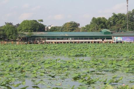 Nha hang banh tom, bun oc 'bua vay' ho Dam Tri, Ha Noi - Anh 7
