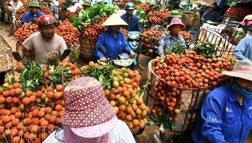 Vải thiều sang Pháp: Việt kiều rưng rưng nếm trái quê hương - Ảnh 2