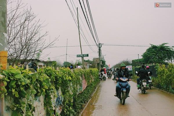 Người Hà Nội đội mưa đi chụp ảnh Tết, dịch vụ ăn theo được dịp hốt bạc - Ảnh 12.