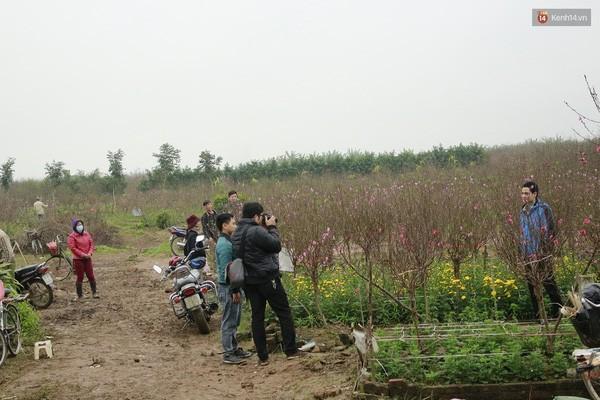 Người Hà Nội đội mưa đi chụp ảnh Tết, dịch vụ ăn theo được dịp hốt bạc - Ảnh 14.