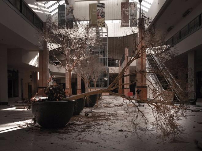 Trung tâm mua sắm này buộc phải đóng cửa sau khi nhiều nhà bán lẻ, bao gồm Sears, đóng cửa hàng trong trung tâm.
