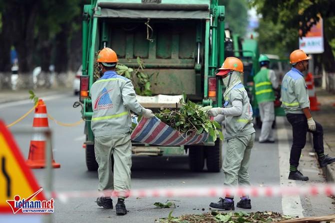 chặt cây, Hà Nội, phố Kim Mã, đường sắt trên cao, ga Hà Nội - Nhổn