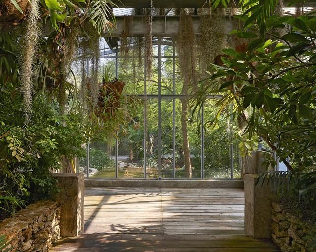 Một góc vườn với 14.000 loài thực vật
