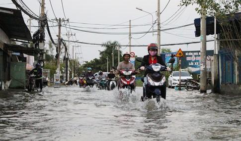 Triều cường dâng cao trên con đường ngập 20 ngày/tháng, ba gác kiếm tiền triệu - ảnh 10