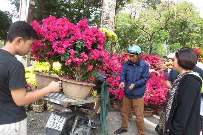 Lo bị 'ép rác', hoa tết xả hàng sớm ở Sài Gòn - ảnh 1