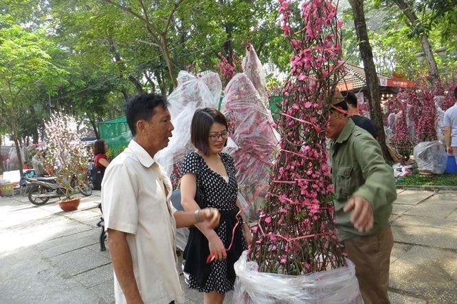 Lo bị 'ép rác', hoa tết xả hàng sớm ở Sài Gòn - ảnh 4