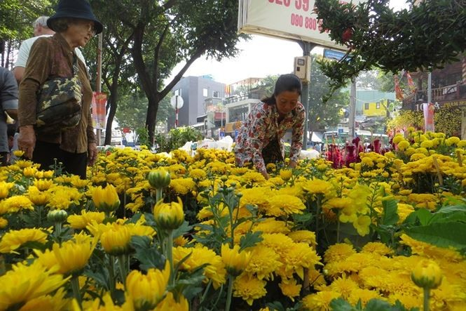 Lo bị 'ép rác', hoa tết xả hàng sớm ở Sài Gòn - ảnh 10