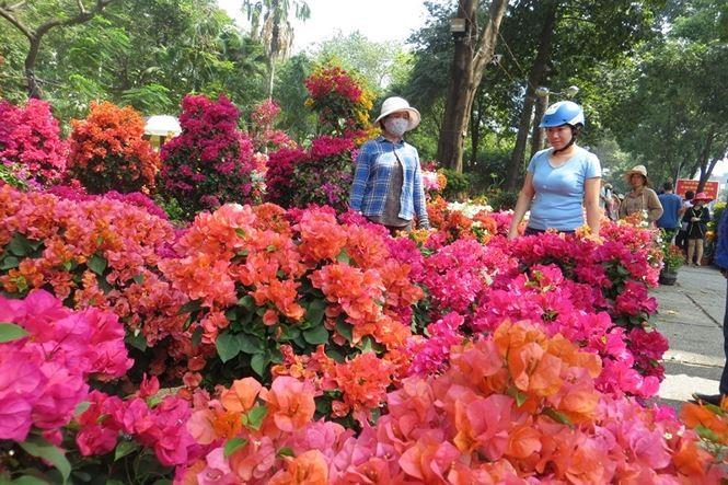 Lo bị 'ép rác', hoa tết xả hàng sớm ở Sài Gòn - ảnh 6