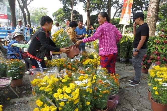 Lo bị 'ép rác', hoa tết xả hàng sớm ở Sài Gòn - ảnh 7