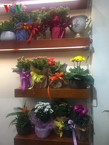 "hoa chau ""dat khach"" lam qua tang trong ngay 8/3 hinh 8"