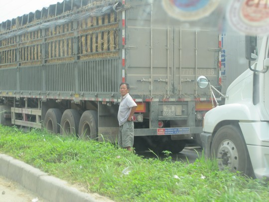 Nhiều lái xe đứng ngồi không yên khi nắng nóng gay gắt, dưa ủ trên xe lâu ngày sẽ bị hư hỏng.