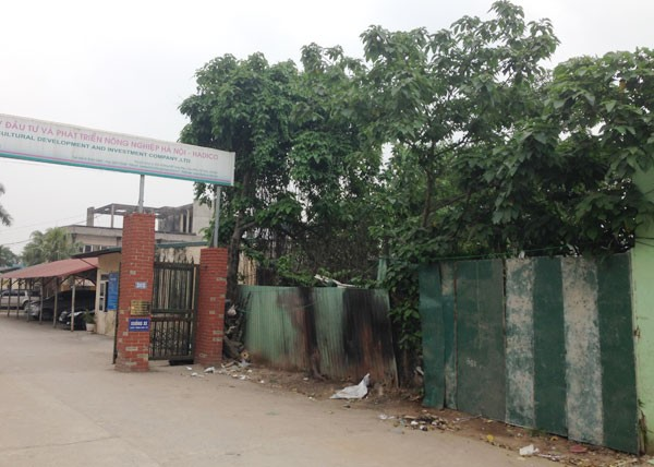 Lideco, MTV Đầu tư phát triển nông nghiệp Hà Nội,HADICO, ki ốt, mở sân tenis, khai trường quán bia