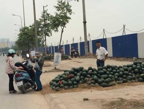 Các điềm bày bán dưa ủng hộ đồng bào Quảng Nam vẫn tràn lan dọc các tuyến đường trên địa bàn TP Hà Nội