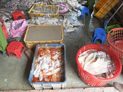 Ruột mực được mang cho cá ăn, còn thân mực được tẩy rửa sẽ mang xuất cho nhà hàng