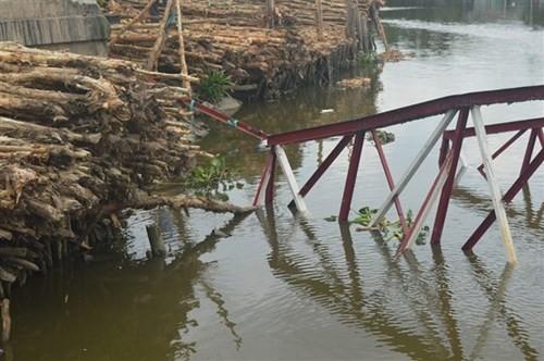 Sà lan đâm sập cây cầu dài hơn 100m vào rạng sáng - ảnh 10
