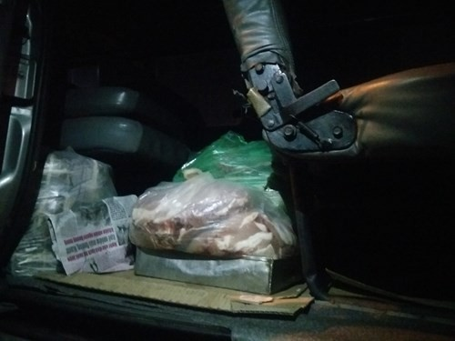 Bắt xe khách chở hơn nửa tấn thịt heo thối vào Sài Gòn tiêu thụ - ảnh 2