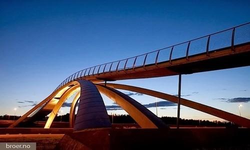 Những cây cầu độc đáo trên thế giới - ảnh 1