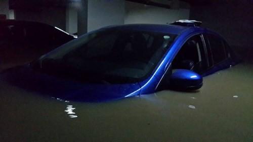 Ngập hầm chung cư, ô tô, xe máy chìm trong nước: Cư dân Green Hills thiệt hại hàng tỉ đồng - ảnh 3