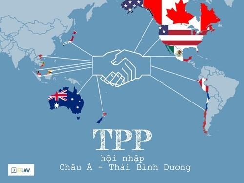 """Nhìn lại thương mại Việt Nam với 11 nước, sau cú """"chốt"""" TPP"""