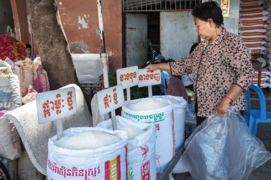 Một cửa hàng lúa gạo tại Phnom Penh