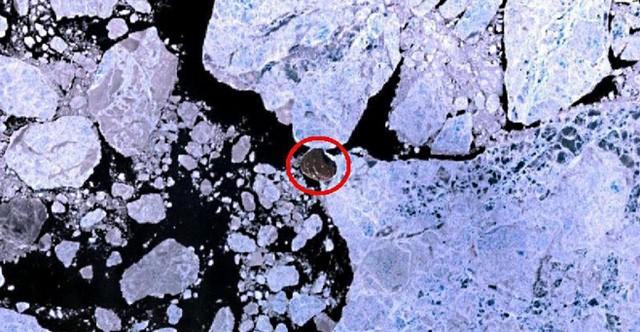 Hans Island chụp từ vệ tinh