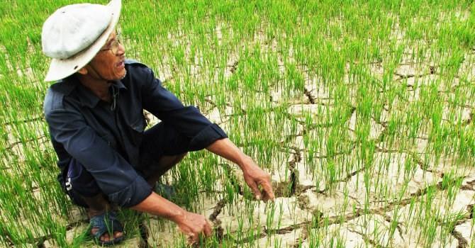Việt Nam đang đối mặt với hạn hán nặng nề nhất trong gần 100 năm