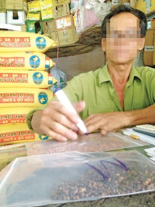Hạt giống rau mầm, Sở NN-PTNT TPHCM, rau an toàn, hàng trung quốc, hóa chất gây ung thư, rau mầm