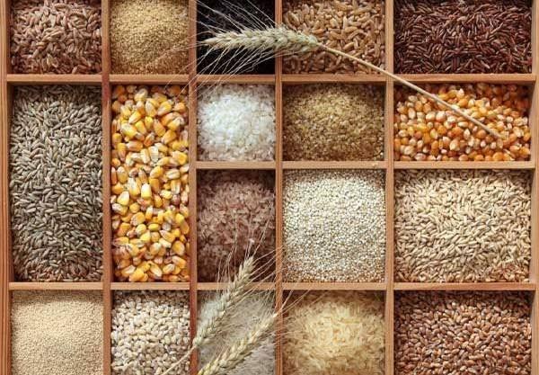 Một số loại thực phẩm chứa nhiều chất xơ