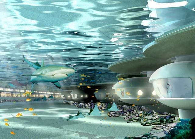 9. Khu nghỉ dưỡng trải dài 80 nghìn mét vuông ở vùng biển sâu - giờ thì con người thật sự có thể sống dưới đáy đại dương! Đây là ý tưởng của nhóm kiến trúc sư nhóm 103 International.Từ mỗi cửa sổ của khách sạn có thể nhìn thấy những đàn cá tung tăng bơi lôi. Khách sạn cũng có phần nhô lên khỏi mặt nước.