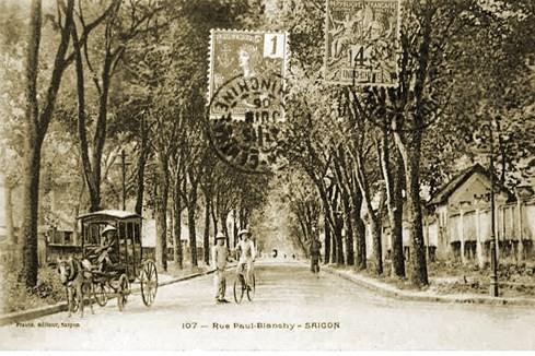 Cây xanh trên đường Paul Blanchy, nay là đường Hai Bà Trưng. Ảnh chụp năm 1906 - Ảnh tư liệu của nhiếp ảnh gia Tam Thái