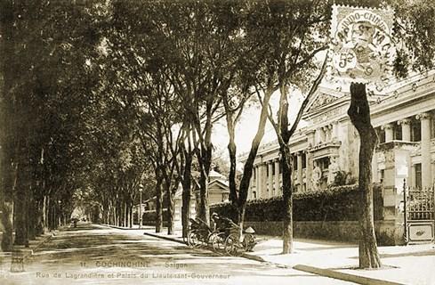 Hàng me trên đường Gia Long, nay là Lý Tự Trọng - Ảnh tư liệu của nhiếp ảnh gia Tam Thái