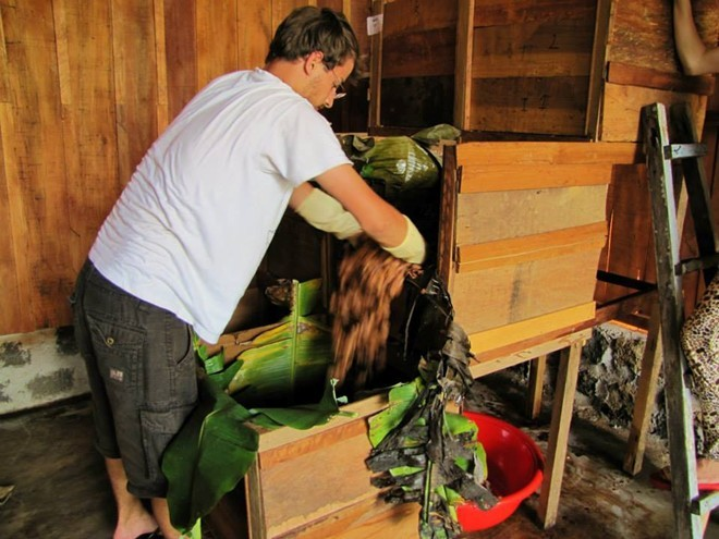 Sau đó hạt ca cao tươi sẽ qua công đoạn ủ, sấy... theo phương pháp thủ công của người Pháp. Ảnh: Marou Chocolate.
