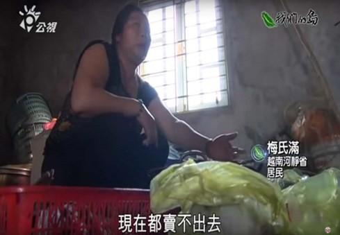 Phóng sự thảm họa cá chết Việt Nam rúng động Đài Loan - ảnh 3