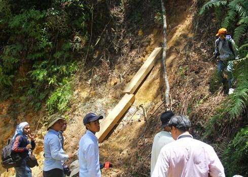 """Hiện trường vụ phá rừng Pơmu ở biên giới Việt – Lào: """"Quá khủng khiếp!"""" 5"""