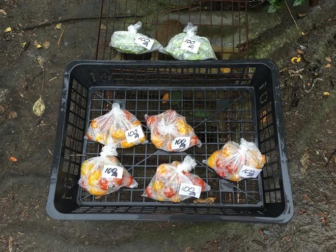 Một quầy hàng bán rau quả tự phục vụ ở giữa khu dân cư đông đúc, gần nhà ga Omiya tại tỉnh Saitama, gần thủ đô Tokyo của Nhật.</div> <div>Hàng sáng, một người nông dân thu hoạch rau quả từ khu nông trại của ông ngay cạnh đó rồi để ra cửa hàng. Đến chiều, ông ra lấy giá hàng và thu tiền về. </div> <div>Hình được chụp tháng 7/2016 - Ảnh: Ngọc Diệp.