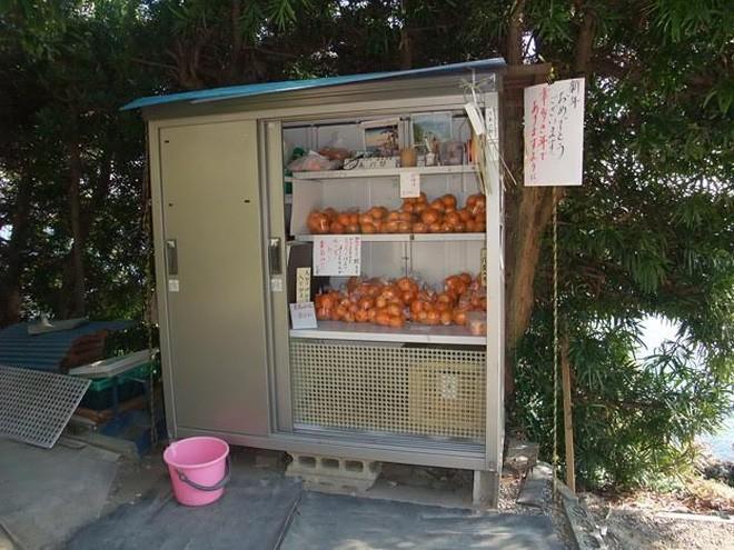 """Không chỉ rau, mà hoa quả như quýt cũng được nhiều nông dân Nhật bán tại những cửa hàng không người như thế này.</div> <div>Tấm biển góc phải có dòng chữ: """"Chúc mừng năm mới quý khách"""". Giá mỗi bịch quýt tại đây chỉ 100 Yên.</div> <div>Chủ hàng đồng thời để lại số điện thoại, để khách có thể liên hệ nếu cần. Ảnh chụp tại thị trấn Maisaka thuộc tỉnh Shizuoka.</div> <div>"""