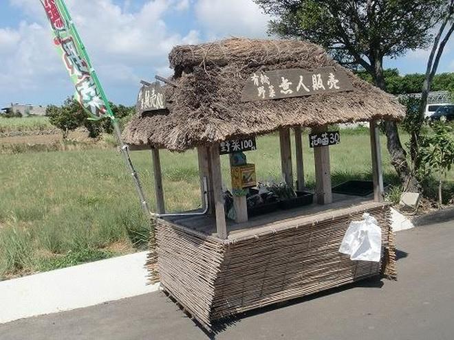 Một gian hàng rau tự phục vụ, nằm giữa cánh đồng thuộc ngôi làng Minami, tỉnh Kumamoto, đảo Kyushu miền Nam nước Nhật - Ảnh: Minami.