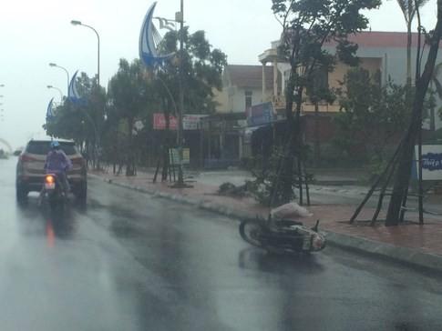 Bão số 4 'tấn công' miền Trung: Cây xanh ngã đổ la liệt, người đi đường bị gió thổi liêu xiêu - ảnh 15